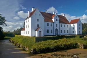 Fra den 1/8 2019 til 1/10 2019, udstiller jeg en serie dyremotiver i Herregårdskælderen på Sønderskov slot.
